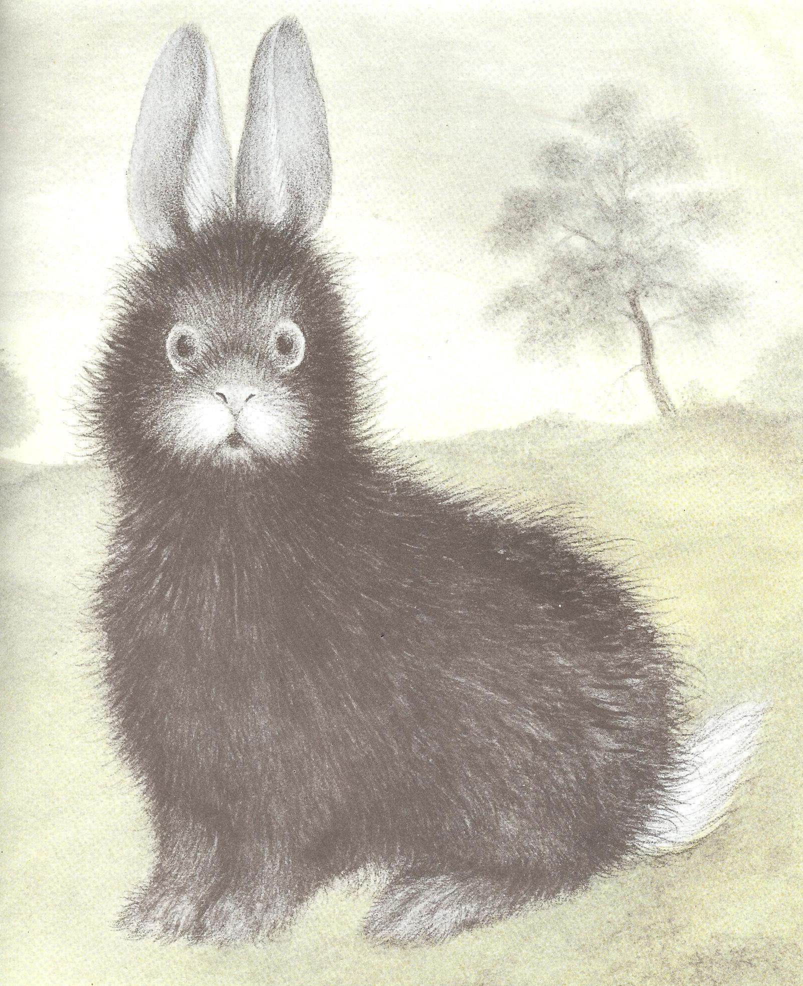 children s book the rabbits wedding by garth williams